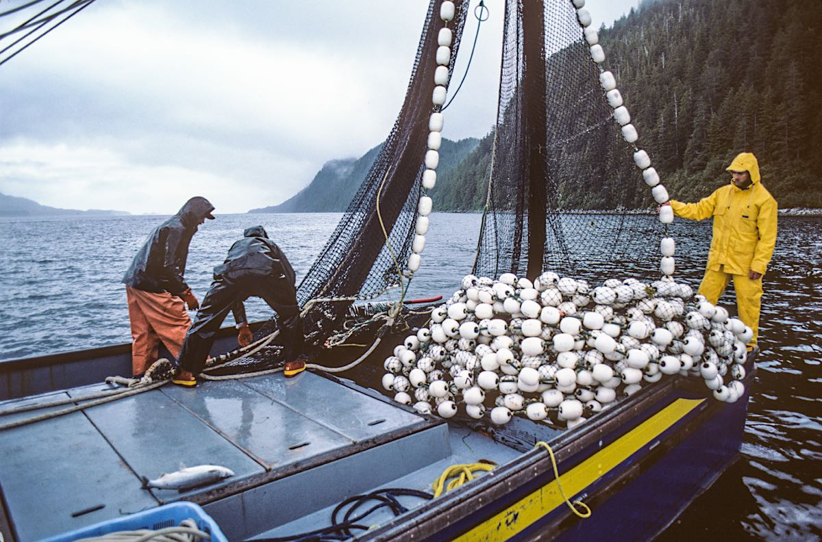 Interactive Map Of Alaska.Interactive Map Of Alaska Commercial Fisheries Launched Alaska Sea